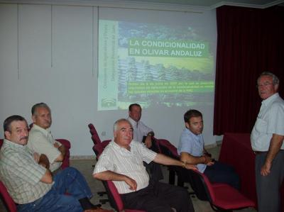20071001112412-condicionalidad-del-olivar-andaluz.jpg