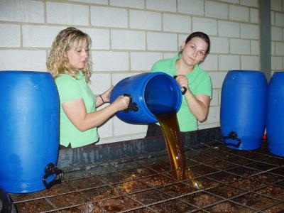 20080613201134-copia-de-recuperacion-de-aceites-vegetales-usados.jpg