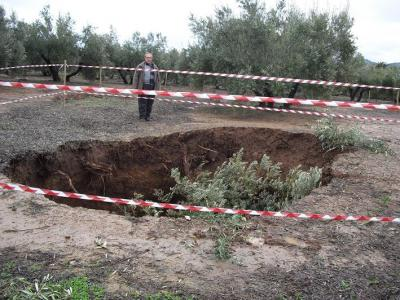 20100217163425-olivo-tragado-por-las-lluvias.jpg