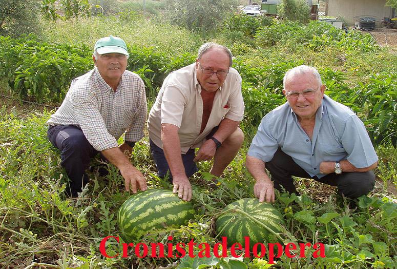 20110811182414-sandias-de-mas-de-25-kilos-copia.jpg