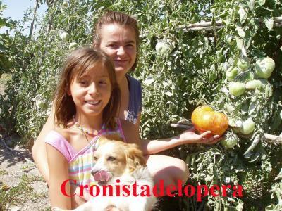 20110813191824-tomates-de-mas-de-un-kilo-copia.jpg