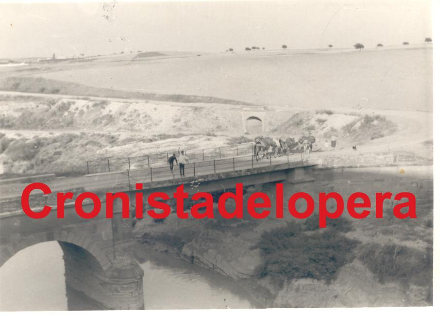 20120613162229-el-puente-del-salado.jpg