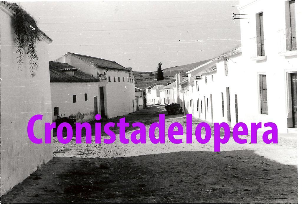 20130610182602-calle-jardines-i-copia.jpg
