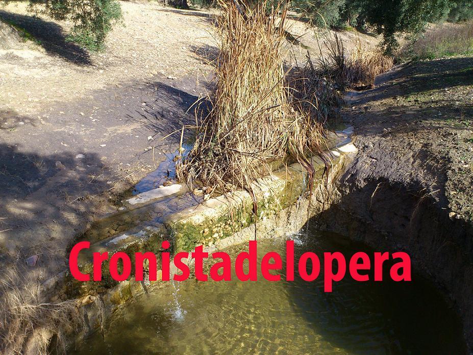 20130613093314-acequia-romana-en-el-paraje-de-la-encinas-copia.jpg