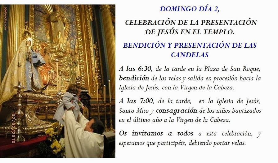 20140128094828-fiesta-de-la-candelaria.jpg
