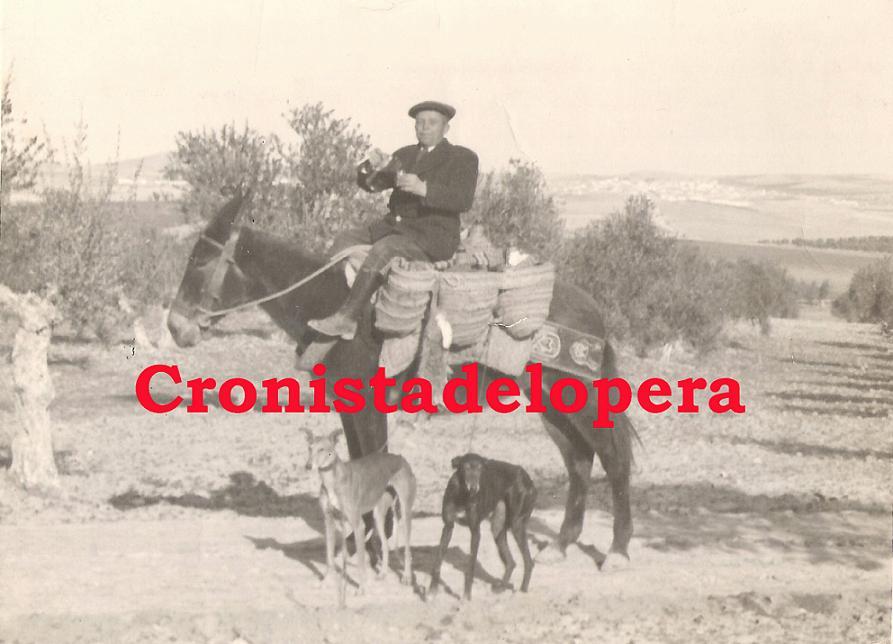 20140605103242-francisco-partera-garcia-canamero-copia-1955.jpg