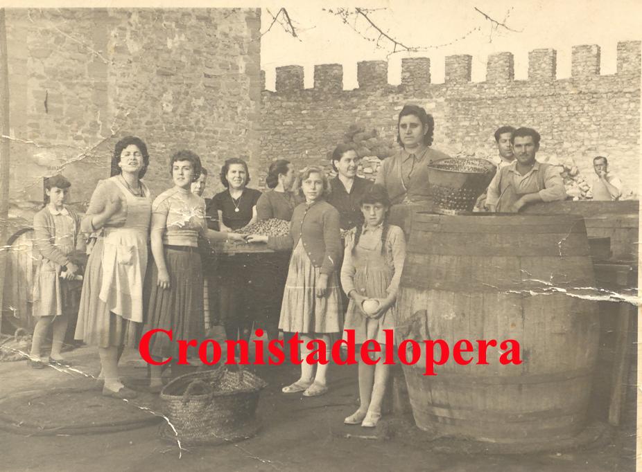 20140901175513-aceitunas-castillo-copia.jpg