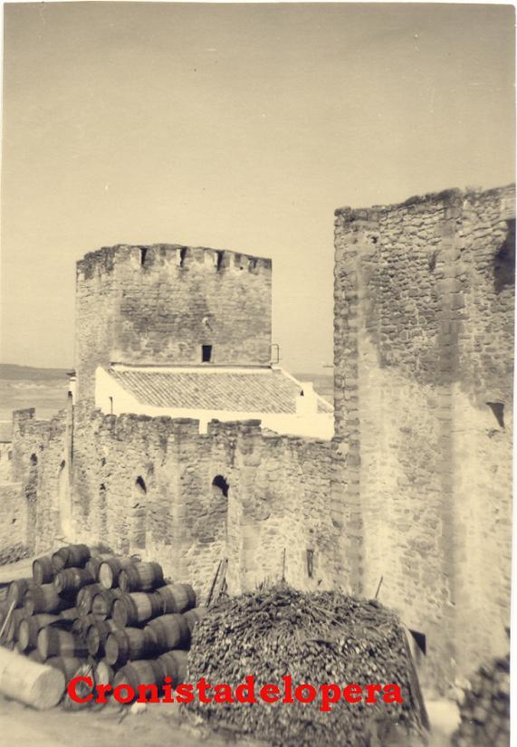 20141120105535-castillo-i-copia.jpg