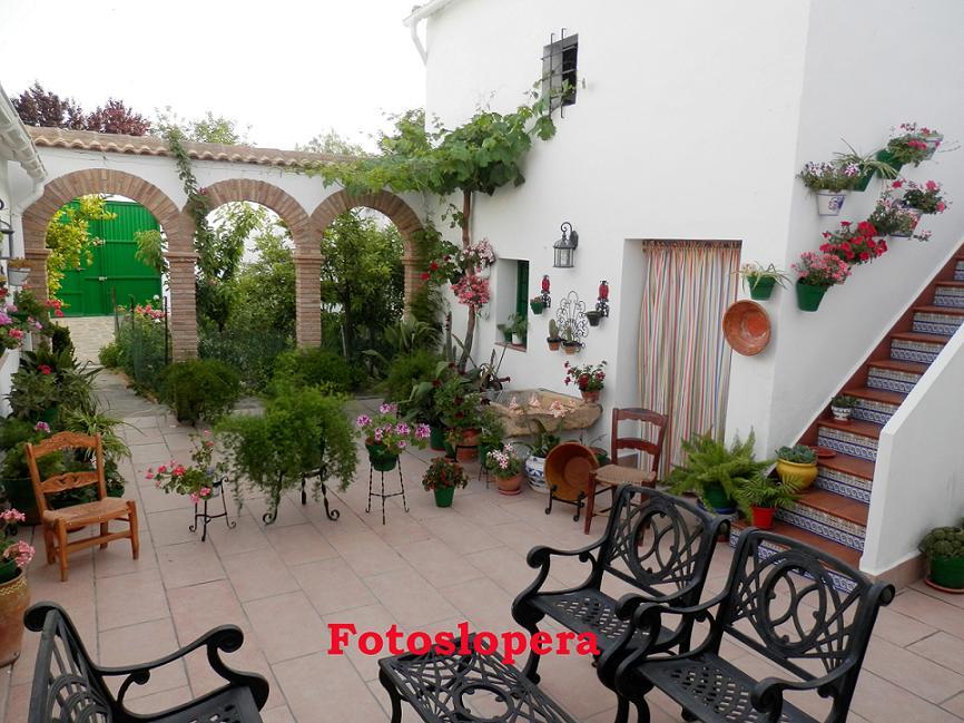 20150513092628-patio.jpg