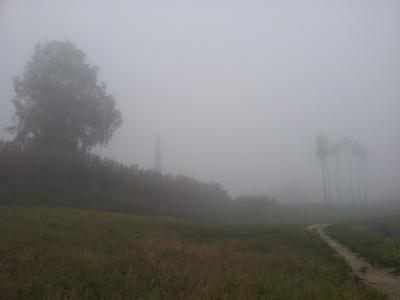 20160317093658-niebla.jpg