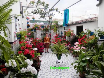 20160505091253-patio.jpg