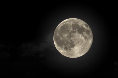 20161114213724-luna-1-.jpg
